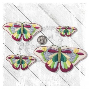Colorful Butterfly 1